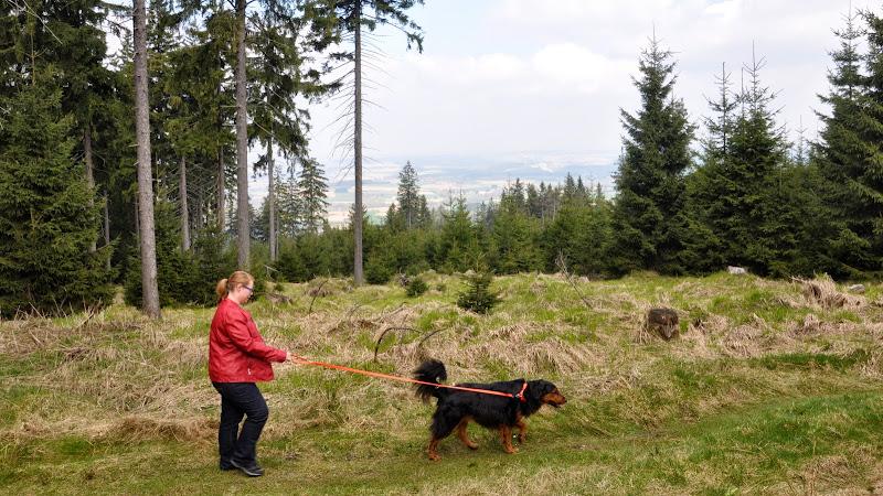 2014-04-13 - Waldführung am kleinen Waldstein (von Uwe Look) - DSC_0435.JPG