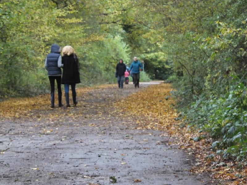 Autumn leaves, autumn coats on an autumn walk