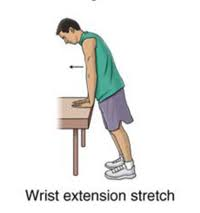 Wrist flexion/extension stretch