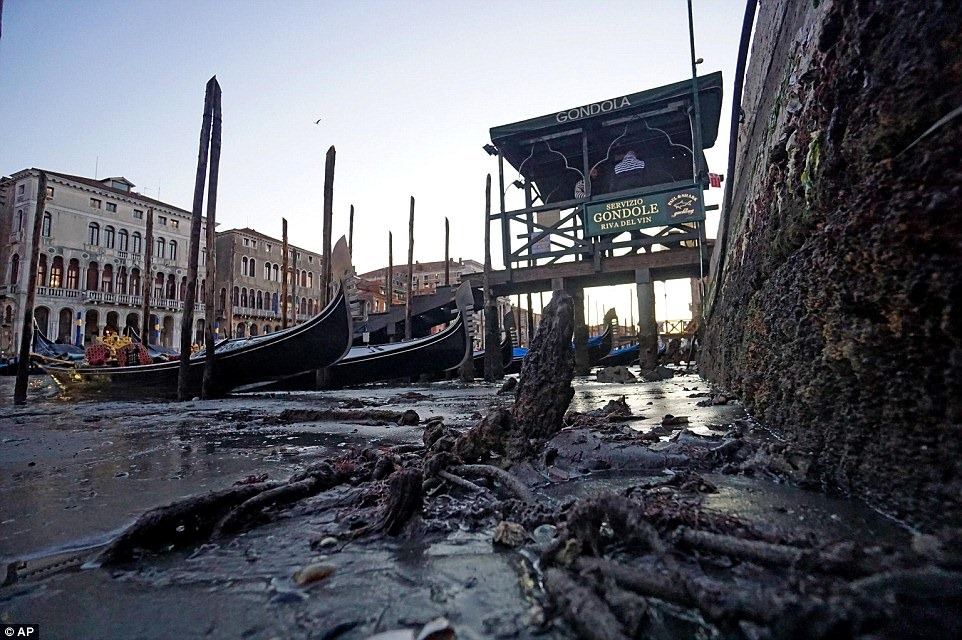 venice-low-tide-11