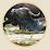 Κτηνοτροφικός Συνεταιρισμός Βουβαλοτρόφων Ελλάδας's profile photo