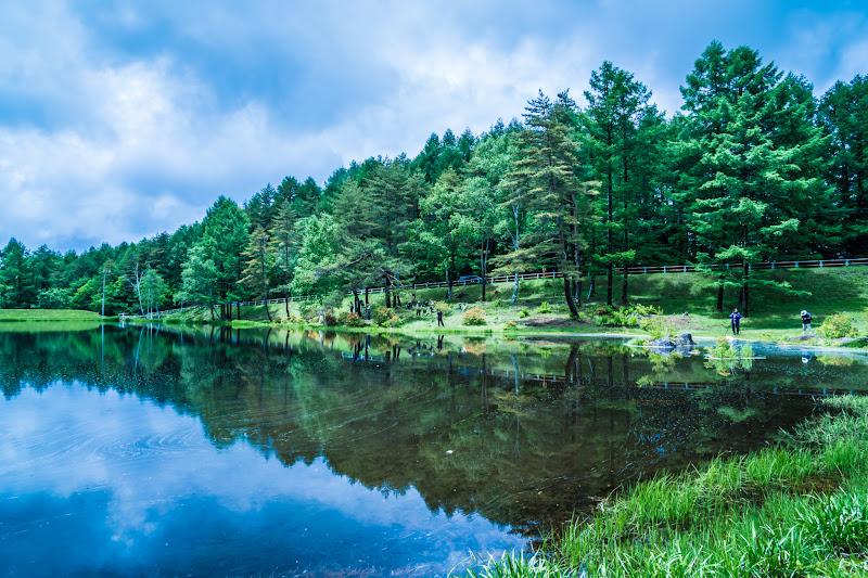 Mishaka Pond photo15
