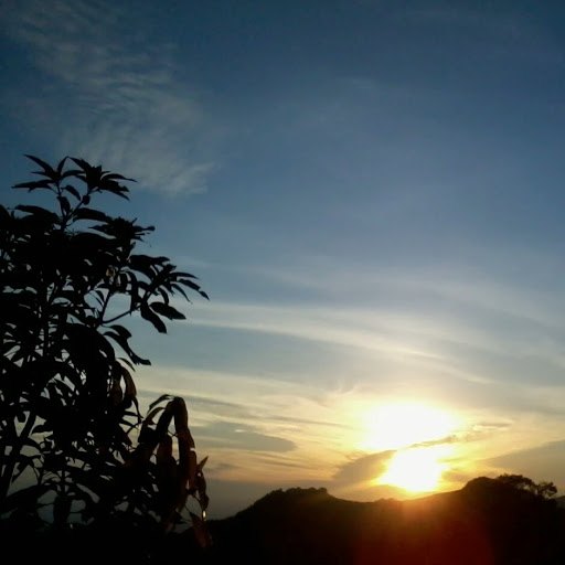 Tan Ta Photo 14