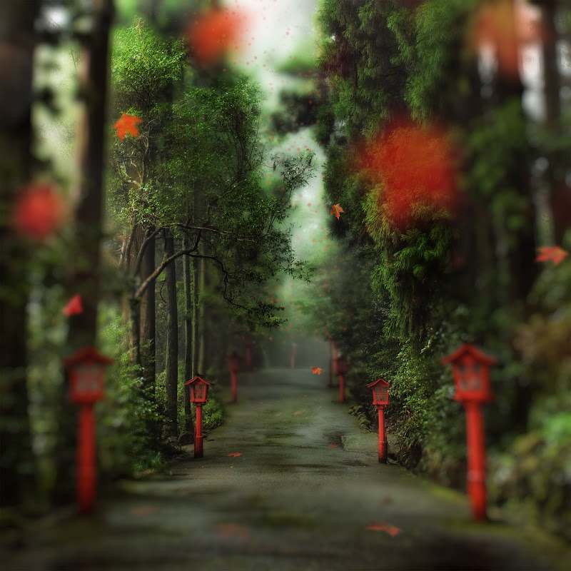 the gentle red path.jpg