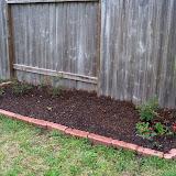 Gardening 2010 - 101_0308.JPG
