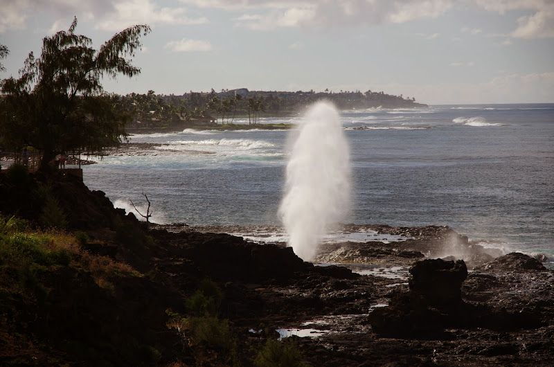 06-27-13 Spouting Horn & Kauai South Shore - IMGP9772.JPG