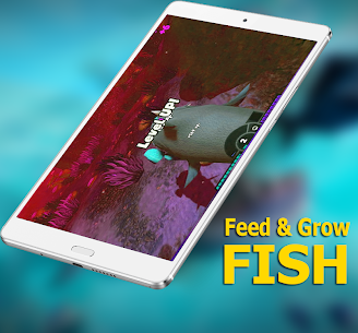 Guide for Fish Feed Grow Series 2020 2