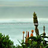 20140824-_PVJ1824.jpg