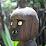 hasan bir's profile photo