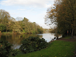 Photo: River Lee seen from Fitzgerald Park