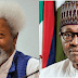 I thought Buhari know Exactly what he's doing — Soyinka Speaks Out