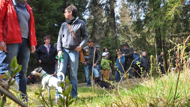 2014-04-13 - Waldführung am kleinen Waldstein (von Uwe Look) - DSC_0419.JPG