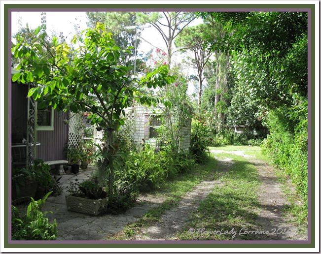08-17-driveway