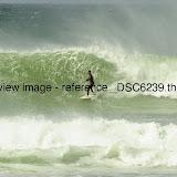 _DSC6239.thumb.jpg