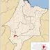 Homem morre vítima de ataque de abelhas no Maranhão