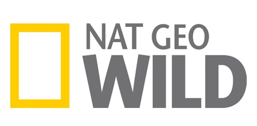 national geographic wild online y gratis por interent las 24h en vivo