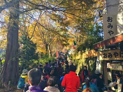 高尾山で宴会