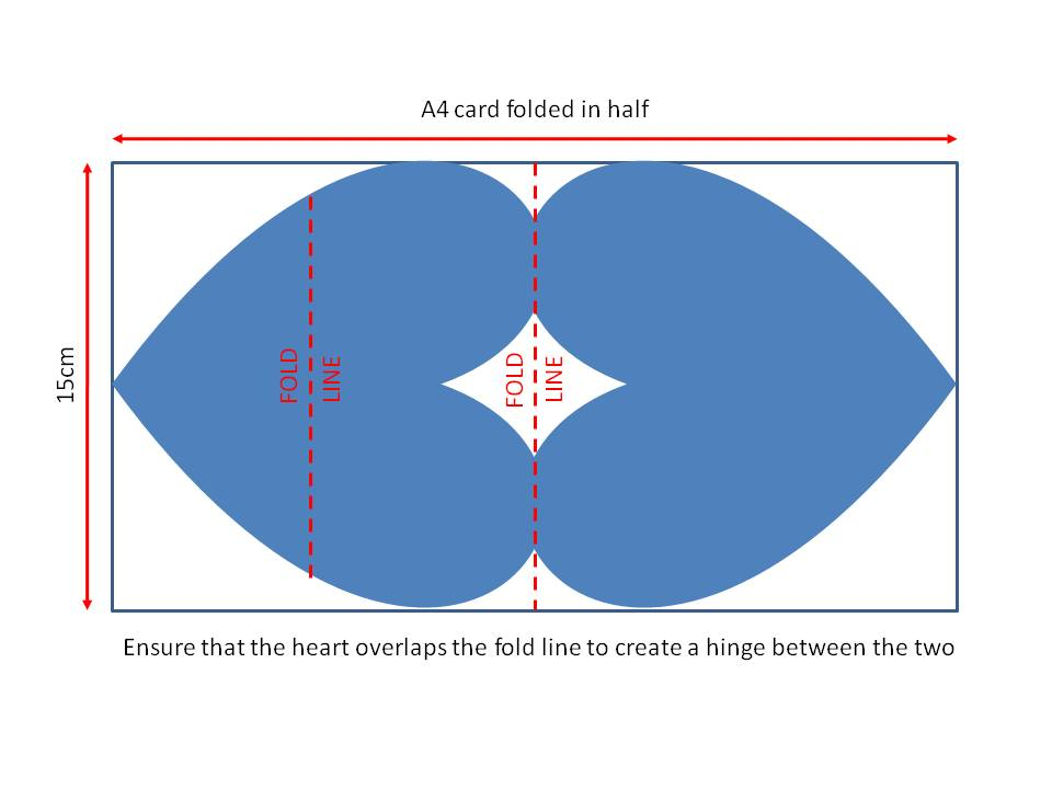 Heart Half Diagram Cut