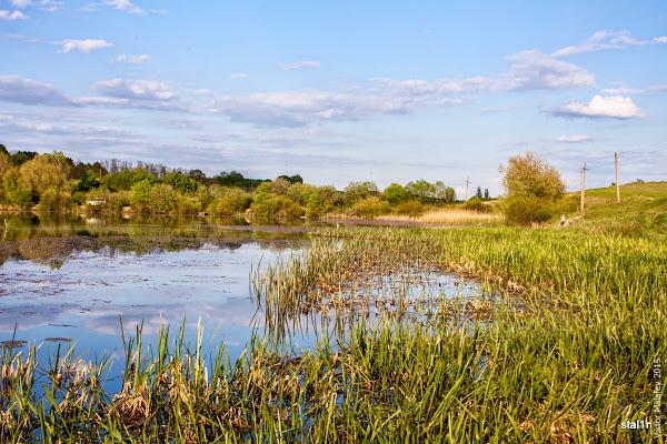ставок в селі Стара Мощаниця