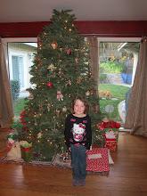 Photo: The Bressler Christmas Tree, 2013