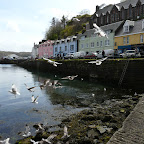 Portree, Scotland.JPG