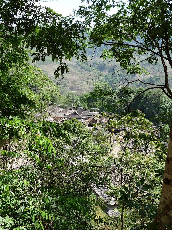 Chine: randonnée xishangbanna, région de Bada - Picture%2B810.jpg