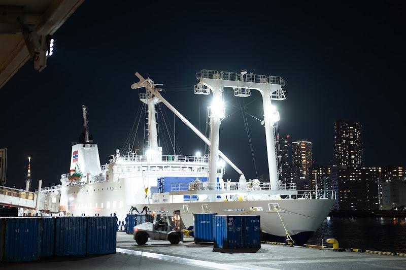 201031 竹芝桟橋停泊中のさるびあ丸