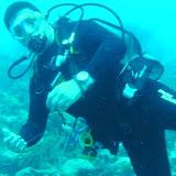 Bonaire 2011 - PICT0028.JPG