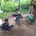 चौकीदार की जागरूकता से पकड़ा गया चोर,पॉवर हाऊस आवासीय परिसर में चोरी का प्रयास…   BNL24NEWS कमलेश सिंह चौहान जिला ब्यूरो चीफ सीधी