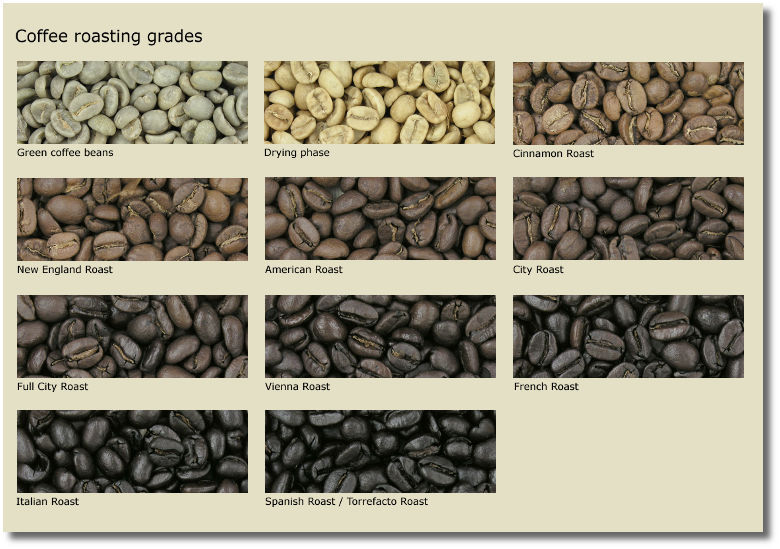 Coffee Bean Roasting Grades