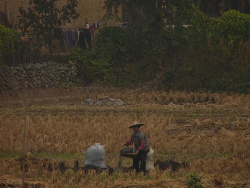 CHINE, Fujian,Xiamen et Tou lou 1 - P1010984.JPG