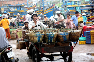 Photo: Year 2 Day 23 - Fish Baskets Full and Off to Sell the Fish