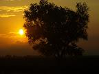 Sonnenaufgang aus dem Zug