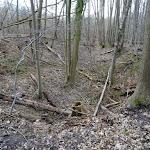 Forêt de Montmorency : effondrement de terrain