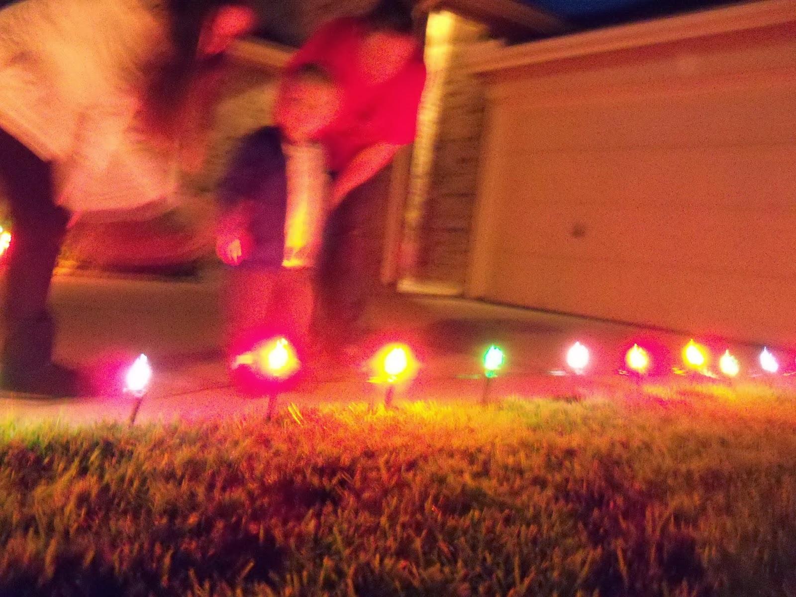 Christmas Lights - 115_8831.JPG
