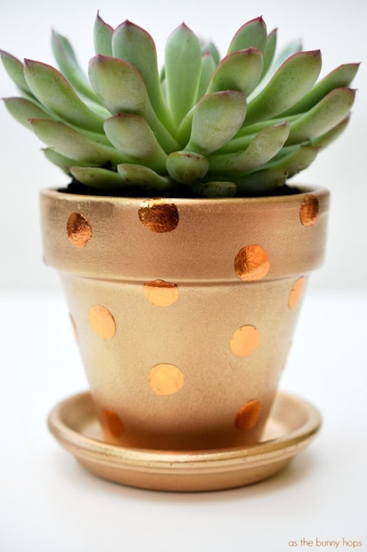 Polka-Dot-Pot-700x1050
