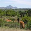 2012-11-12 12-31 RPA - dużo bardziej zielony kraj.JPG