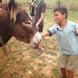 Campaments Estiu Cabanelles 2014 - IMG_0034.JPG