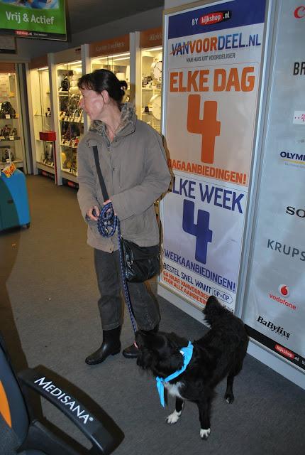 KNON-honden in Emmen - DSC_0802.JPG