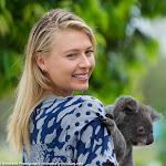 Maria Sharapova - Brisbane Tennis International 2015 -DSC_5967.jpg