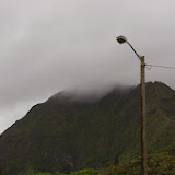 06-18-13 Waikiki, Coconut Island, Kaneohe Bay - IMGP6990.JPG