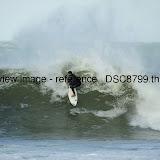 _DSC8799.thumb.jpg