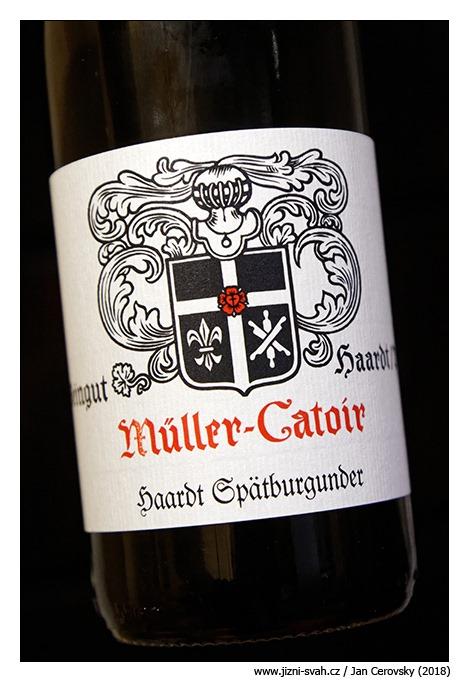 [Weingut-M%C3%BCller-Catoir-Haardt-Sp%C3%A4tburgunder-trocken-2013%5B3%5D]