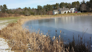 Ice on the pond