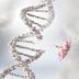 O que aconteceria se o DNA não existisse?