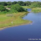 04-06-12 Myaka River State Park - IMGP9878.JPG