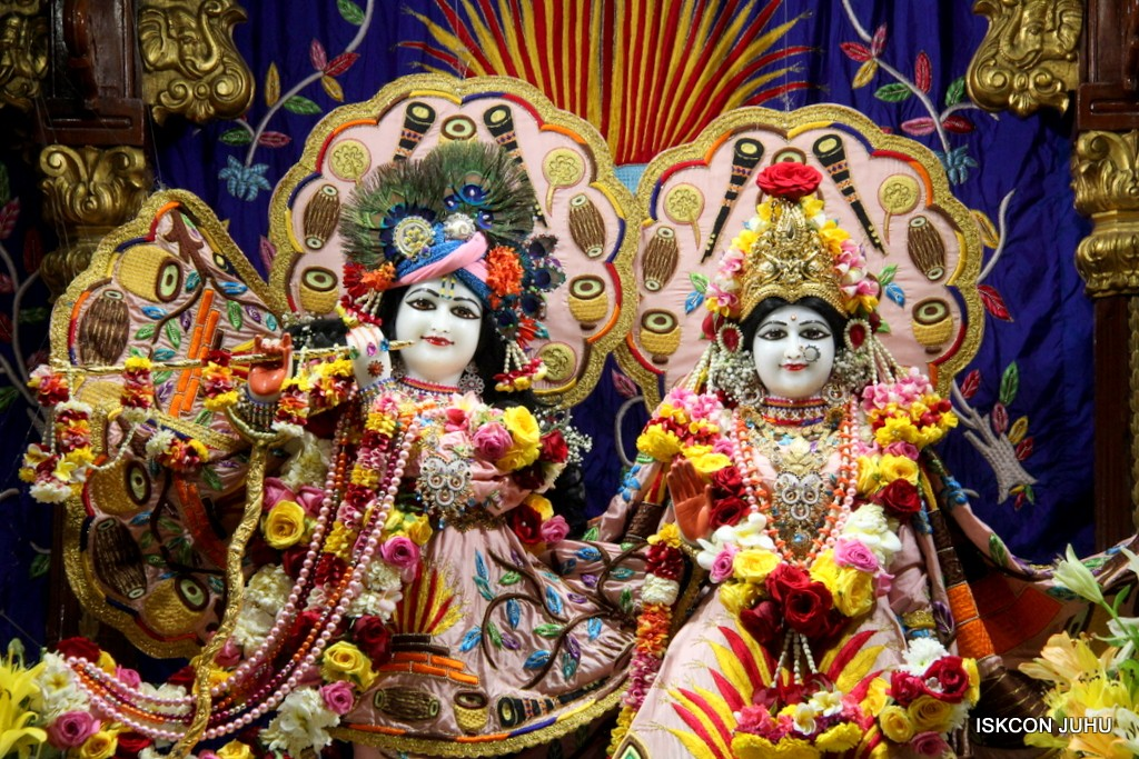 ISKCON Juhu Sringar Deity Darshan 10 Jan 2017 (42)