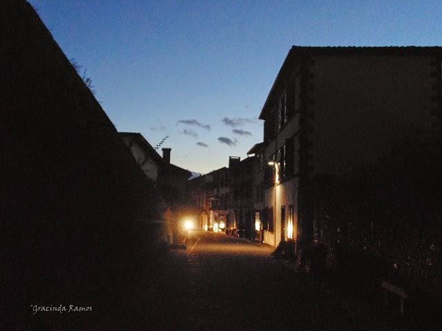 passeando - Passeando por caminhos Celtas - 2014 - Página 2 DSC01175