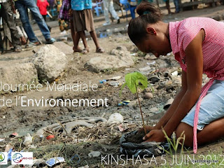 """Une jeune fille plante un arbre le 5 juin 2012 à Kinshasa dans le cadre du programme """"Initiative save tomorrow"""""""