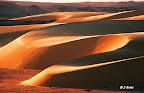 Les dunes du désert de Lybie au crépuscule
